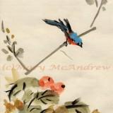 """""""Chinese Bird"""""""