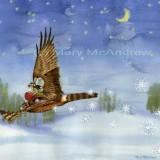 """""""Fairy Hawk"""""""