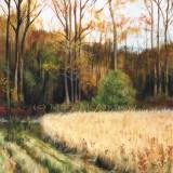 """""""Fall Field"""""""