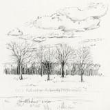 """""""Ink Landscape"""""""
