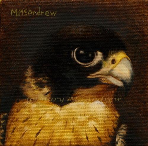 """""""Peregrine Falcon oil"""""""