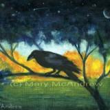 """Raven Night Sky"""