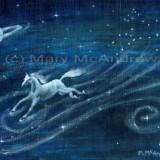 """Star Horse"""