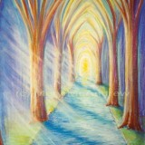 """""""To the Light in the Forest"""""""