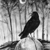 """""""Raven Sphere"""""""