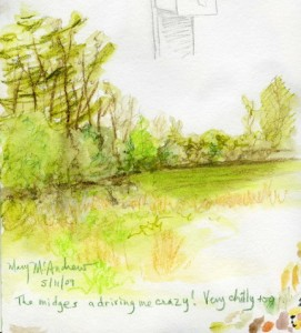 may field 72dpi1 271x300 Spring Watercolor + Watercolor Pencil Sketches 5 12 09