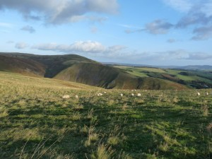 View of Clennel Hill