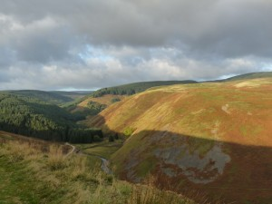 "Hills called ""The Dodd"" and ""Old Rookland"""