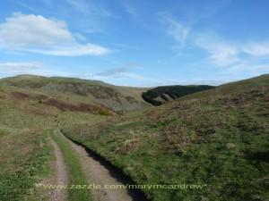 Ingram Valley -shepherd's road