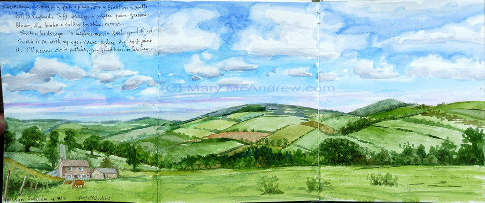 """Fields above Edlingham"""