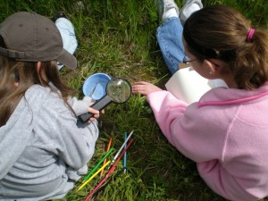 Girls study a bug with a magnifying glass