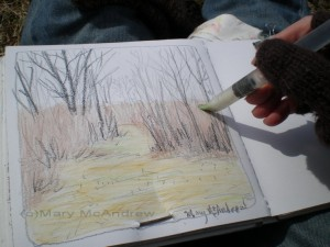 Using the flat tipped waterbrush to wet the watercolor crayons