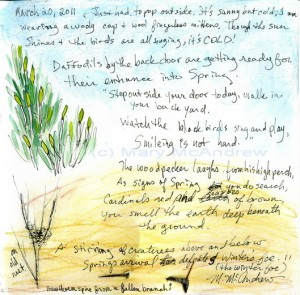 """Step Out Your Back Door"" notes, poem and Hawthorn needle."