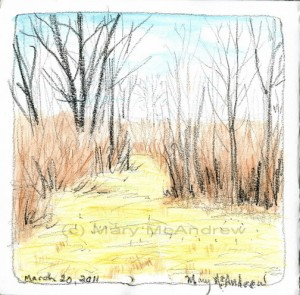 cwalk 3 20 11 sketch in maze 2 300x295 Nature Journaling Class   April 2011