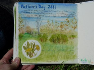 This is the page as I finished it in the field, dandelions and all.