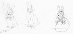 Bunny Studies in pencil