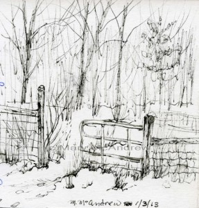 Fence in ink 1-3-13