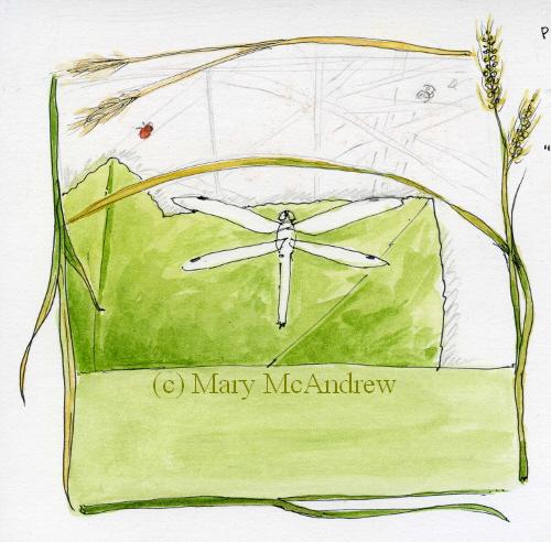 Mary mcandrew wedding