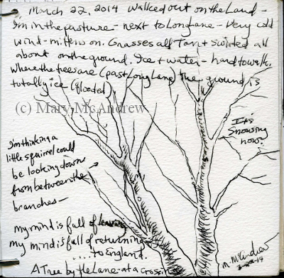 (c)3-22-14 tiny sketchbook (400x391)