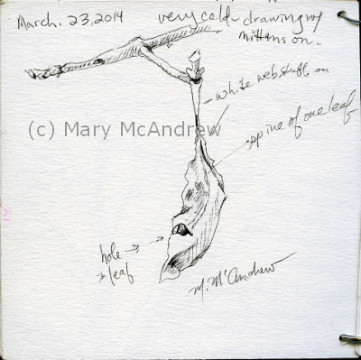 (c)3-23-14 tiny sketchbook (400x399)