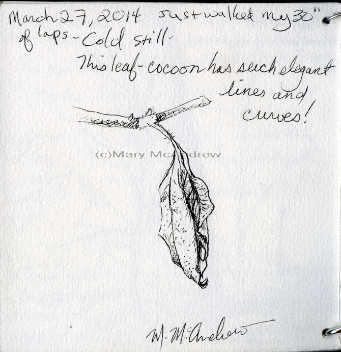 Another sketch of the 'leaf cocoon' after my walking was finished.
