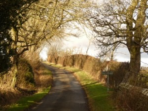 This is the upper or back lane to the village.