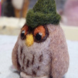 (c)little owl w green hat (12)