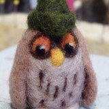 (c)little owl w green hat (9)