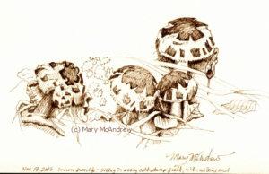 Mushrooms, brown permanent ink