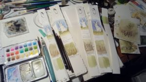 Test strips and my tiny field palette.