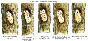 5 Little Owls